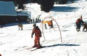 Gosau2002-25