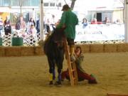 136-3687 IMG * Wie kommt man einfach aufs Pferd ?