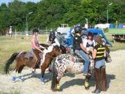132-3214 IMG * Vorbereitung zum Bewerb: Pony Slalom
