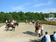 132-3224 IMG * WarmUp zum Int. Horse - Ball Masters