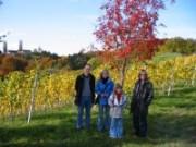 Wanderung durch den Steirischen Herbst 2002